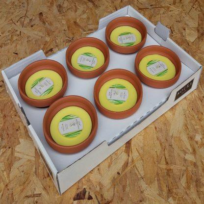 carton bougie citronelle extérieur vasque PM 120